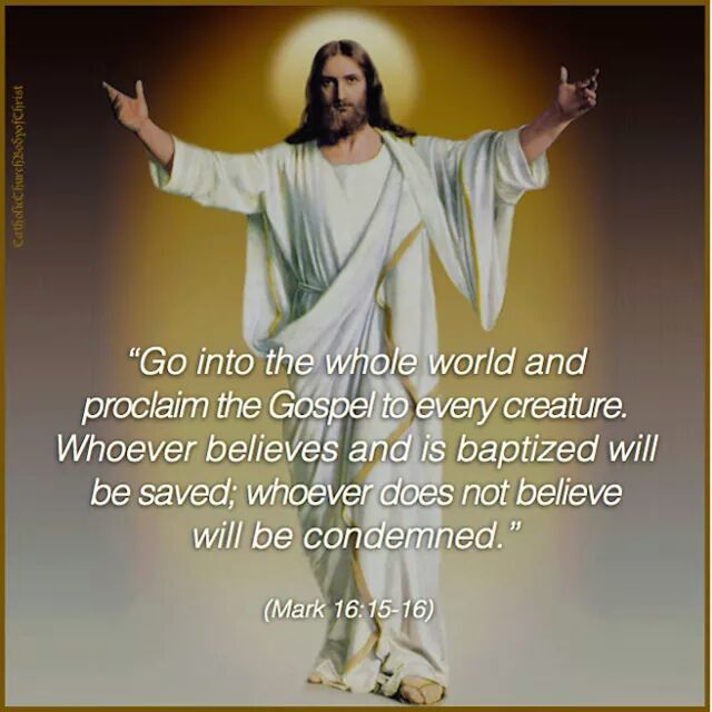 Image result for preach gospel to every creature