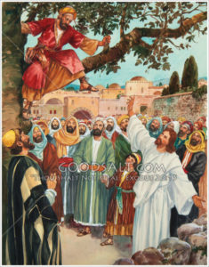 zacchaeus-climbed-up-in-a-tree-so-hecould-see-jesus-goodsalt-rhpas0757